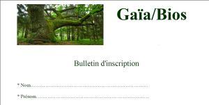 image bulletin