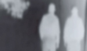 paranormal_detail